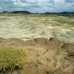 Painted Desert, Navajo Co, AZ