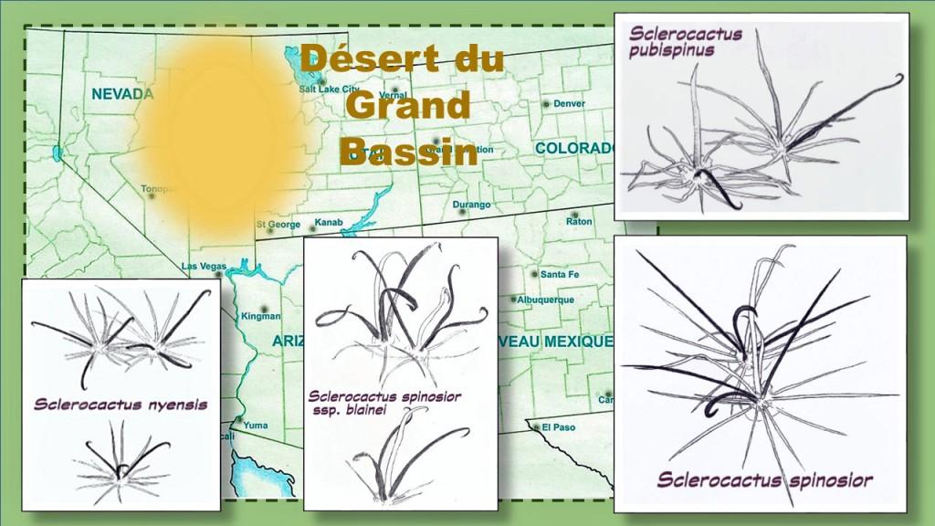 Epines Desert-GdBassin